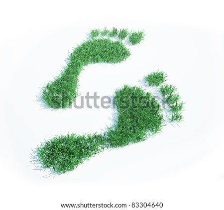 Ecological footprint - stock photo