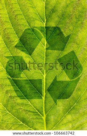 ecological recycling concept.  recycle symbol on green leaf texture - stock photo