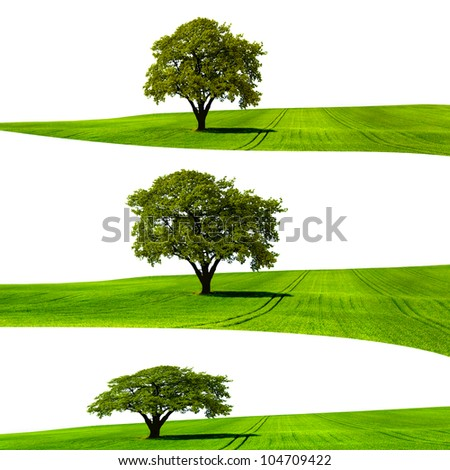 Ecological Structure - stock photo