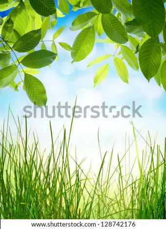 Ecology concept. Abstract natural backgrounds with green grass and beauty bokeh - stock photo