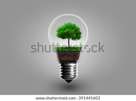 Ecology Concept. Green tree growing in light bulb on a gray background