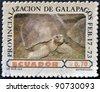 ECUADOR - CIRCA 1973: A stamp printed in Ecuador dedicated to Provincialization of the Galapagos, shows a tortoise, circa 1973 - stock photo