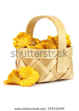Edible wild mushroom chanterelle (Cantharellus cibarius) in basket on a white background - stock photo