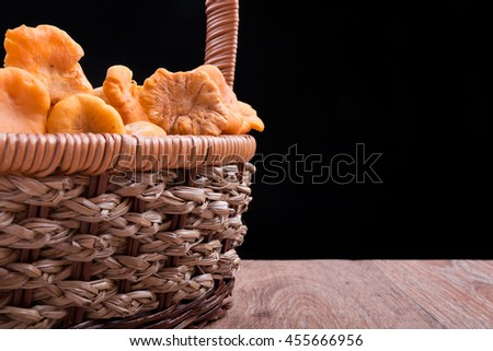 Edible wild mushroom chanterelle in basket - stock photo