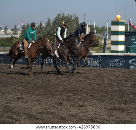 Edmonton, AB,CANADA MAY 13 - Horses pass the post during training for the last horseracing season at Edmonton's Northlands Racetrack. It will close in the fall of 2016 after over 100 years of racing. - stock photo