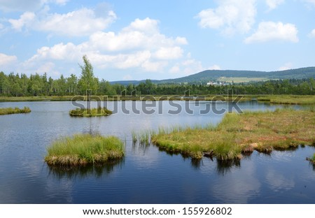 Educational trail Chalupska slat in the Sumava National Park, Czech republic - stock photo