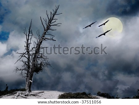 eerie night with tree storm clouds and moon - stock photo