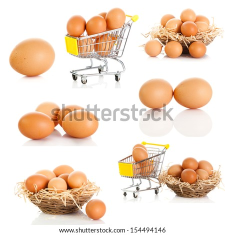 Egg collection isolated on white background.  Brown eggs  - stock photo
