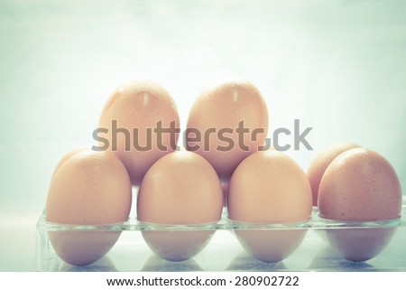 Egg collection isolated on white background  - Vintage retro picture style - stock photo
