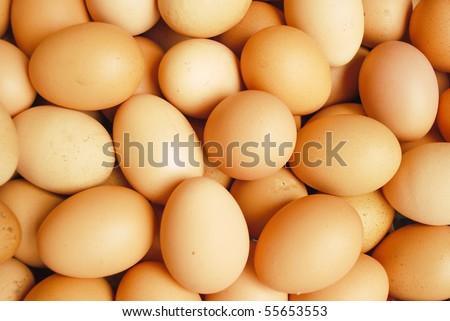 Egg Farm in Thailand - stock photo
