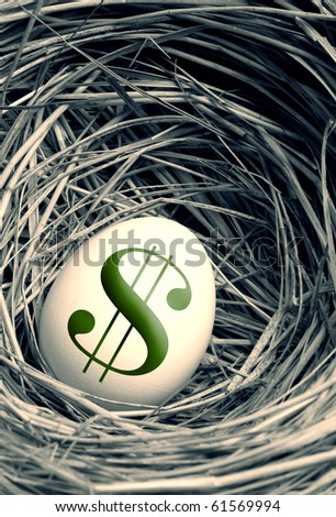 egg in a nest - stock photo