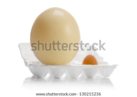 Egg of ostrich and chicken in plastic box for eggs on white background - stock photo