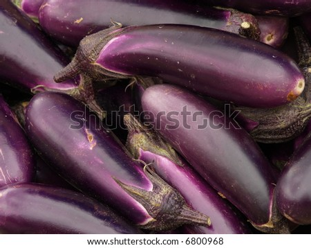 egg plants - stock photo