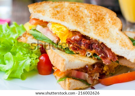 Egg Sandwich and Bacon Sandwich, Sandwich with bacon and fresh vegetables - stock photo