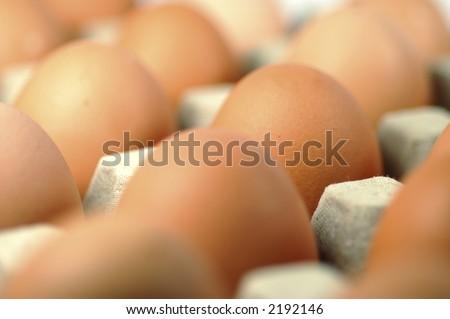 Egg standing.Cardboard Egg Support . - stock photo