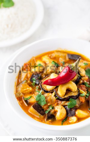 Eggplant curry with cashew nuts served with red chili on the top and basmati rice on white background  - stock photo