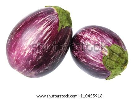 Eggplant on White Background - stock photo