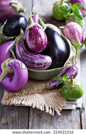 Eggplants of different color and variety on the table - stock photo