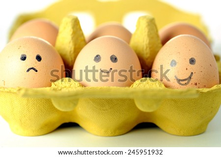 eggs - stock photo