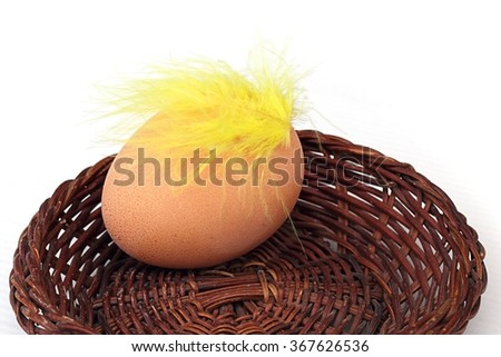 eggs in a basket and feather - stock photo