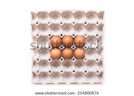 Eggs in paper tray isolated on white background - stock photo