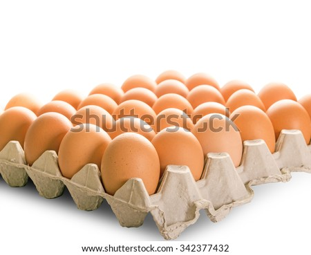 Eggs in the paper tray package isolated on white background.with clipping path