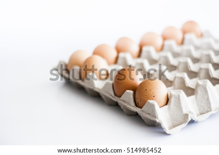 eggs in tray. front row focused.
