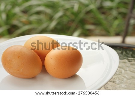 eggs on a white dish at the market