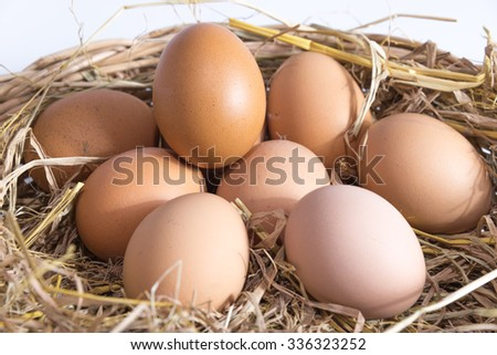 eggs on straw basket