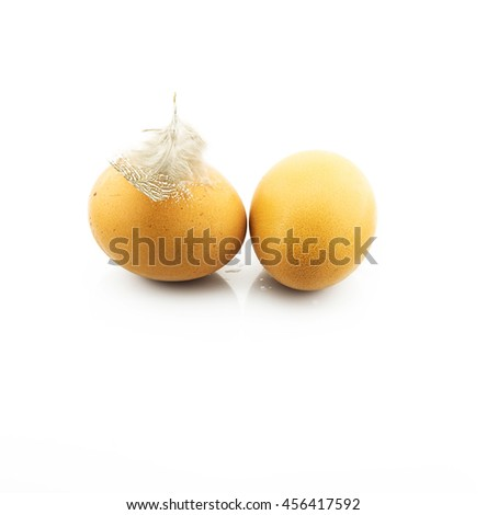 Eggs on white background with feather