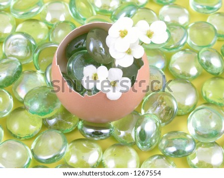 eggshell with spring flowers on yellow background
