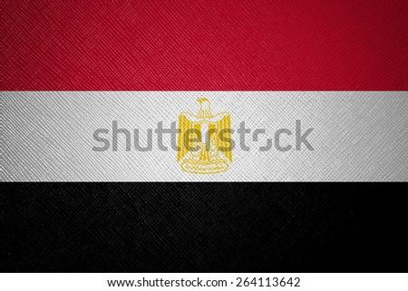Egypt flag leather texture - stock photo