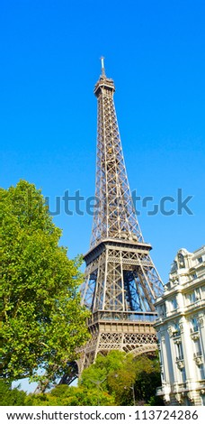 Eiffel tower behind the tree