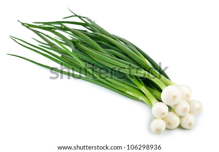 Eight ripe beautiful spring onions isolated on a white background - stock photo
