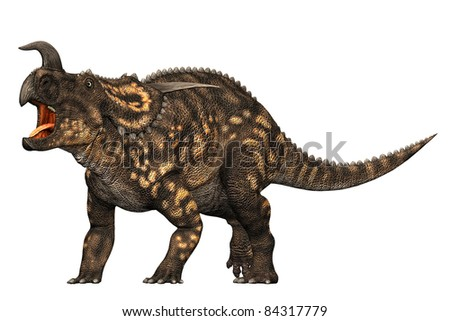 Einiosaurus dinosaur defencive pose. Medium-sized centrosaurine  ceratopsian from the Upper Cretaceous  of northwestern Montana. Name means 'buffalo lizard. - stock photo