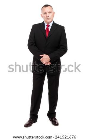 Elder businessman full length portrait - stock photo