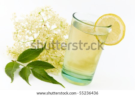 elderberry flower flavored summer refreshment - stock photo
