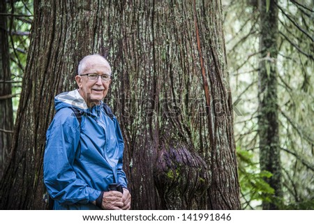 Elderly active man hiking in old growth forest - stock photo