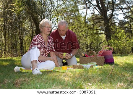 Elderly couple enjoying a leisure pic nic outdoors in the field - stock photo