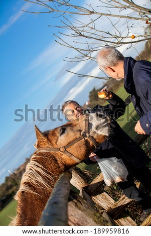 Elderly couple laughing and having fun petting a horse in a paddock on a cold sunny winter day as they enjoy the freedom of their retirement