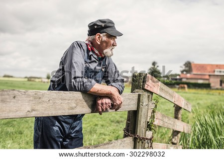 Elderly grey-haired bearded farmer leaning on a paddock fence watching his animals with farm buildings in the distance - stock photo