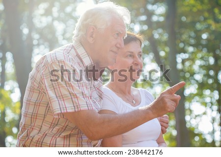 Elderly happy couple spending afternoon together in park - stock photo