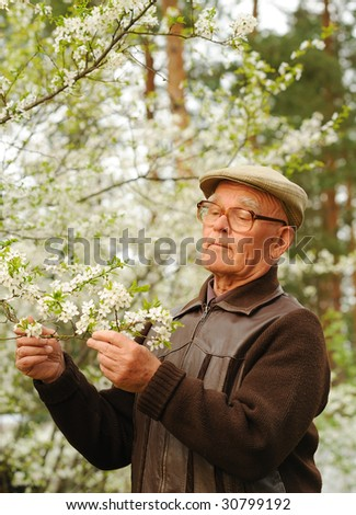 Elderly man working in a garden - stock photo