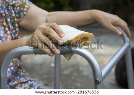 elderly woman holding a slice of bread for dogs