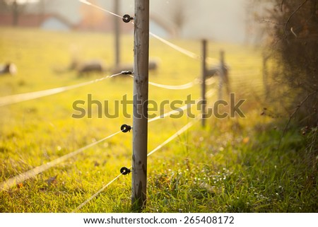 Electric fencing around lovely pasture with farm animals - stock photo