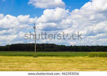 electric pole on green meadow. Beautiful blue sky with clouds