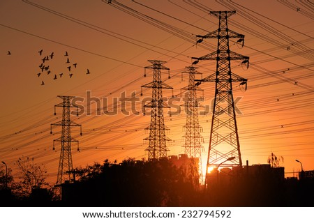 Electric Power pylon with flock birds at Sunset. - stock photo