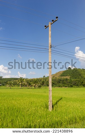 electricity post Location through the rice fields on blue sky background