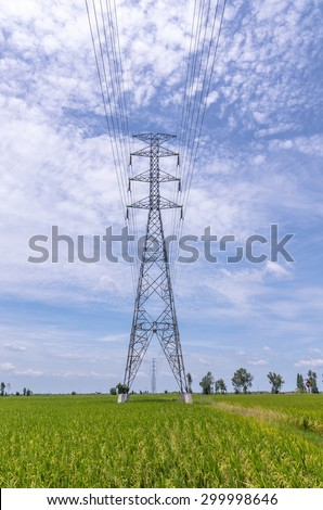 electricity post over rice field on blue sky