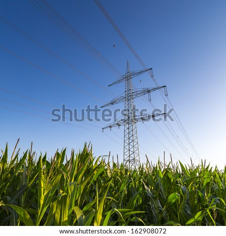 Electricity pylon power pole high voltage against blue sky with corn field - stock photo